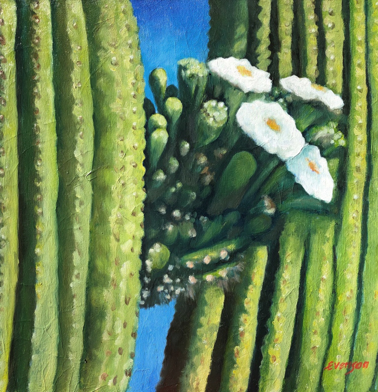 Saguaro Bloom II