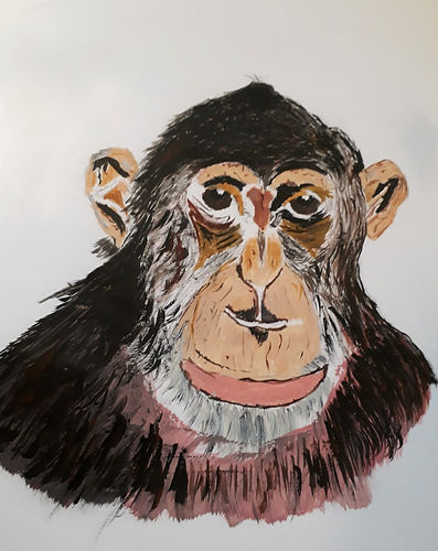 Art Group monkey.jpg