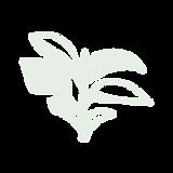 PLANTEE PLANT CLUB ICONS.png