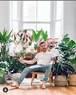 plantastic_mr_fox 3