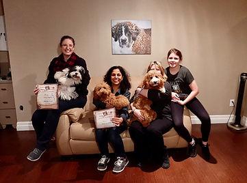 Mississauga Oakville Puppy Training Puppy Classes