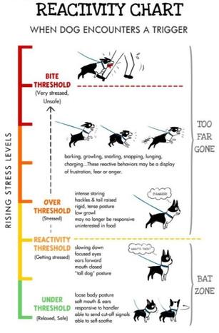 Behaviour Adjustment Training (BAT) Threshold