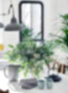 Tabela estilista e plantas