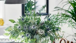 Evergreen Content - No!  I'm Not Talking Plants!