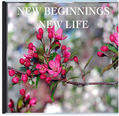 New Beginnings, New Life