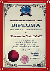Диплом WSSA Кикалишвили Константин.png