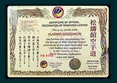 Сертификат WSF Владимир Гегечкори.png