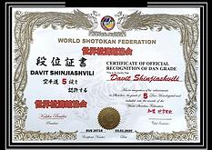 5 Дан WSF Шинджиашвили Давид.png