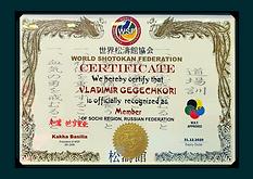 Сертификат WSF Гегечкори Владимир.png