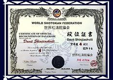 4 Дан WSF Шинджиашвили Давид.png