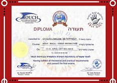 Диплом WSSA Гвалия Мэлор.png