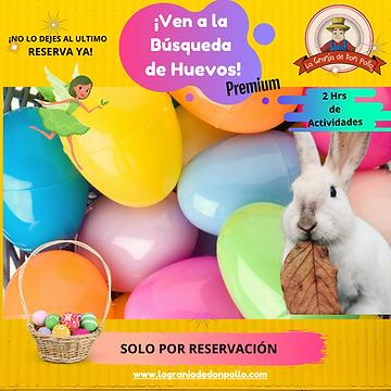 Copia de Busqueda de Huevos 2.png