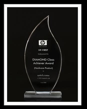 HP DIAMOND Class Achiever Award 2008