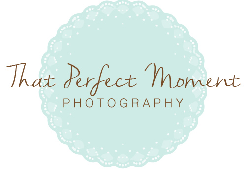 That Perfect Moment Logo
