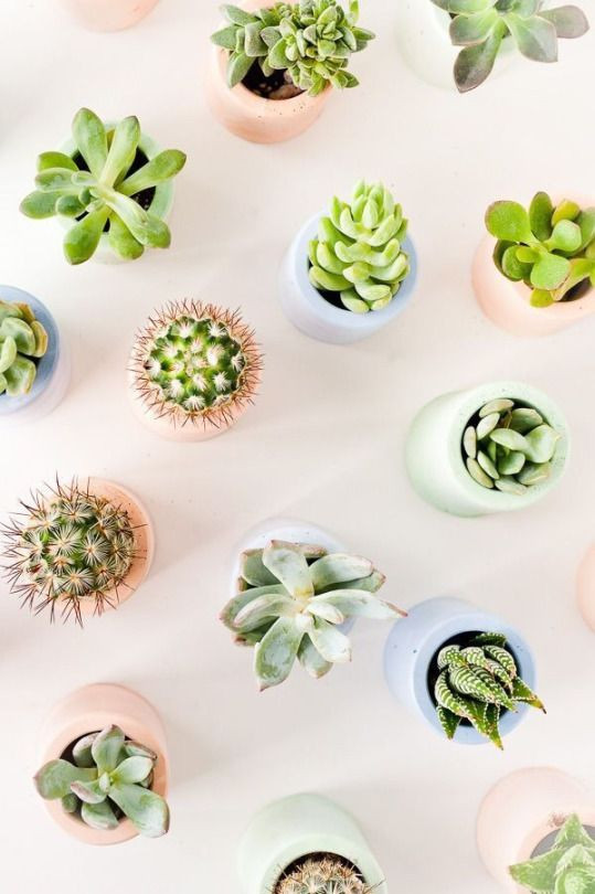 Accessories That Your Workspace Craves