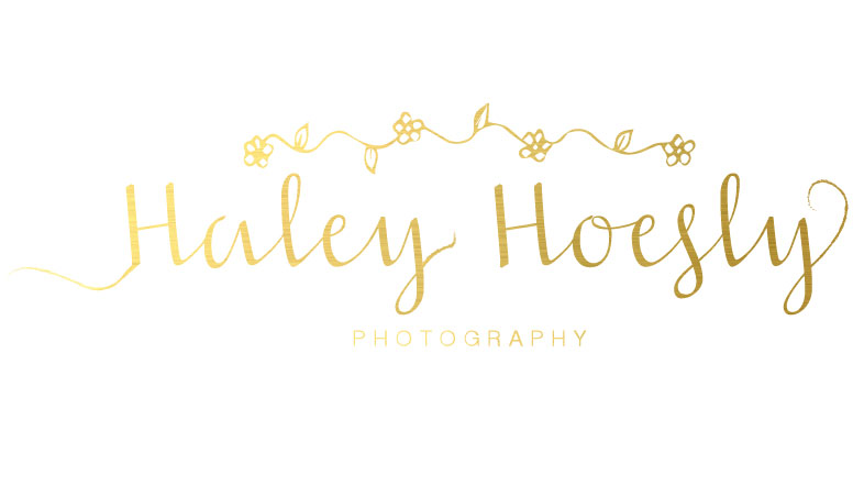 Haley Hoesly Photography Logo