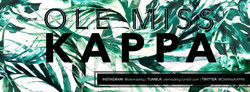 palm trees cover photo