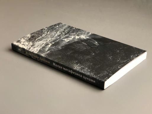 О недостаточности книги Ж.-П. Дюпюи «Малая метафизика цунами»