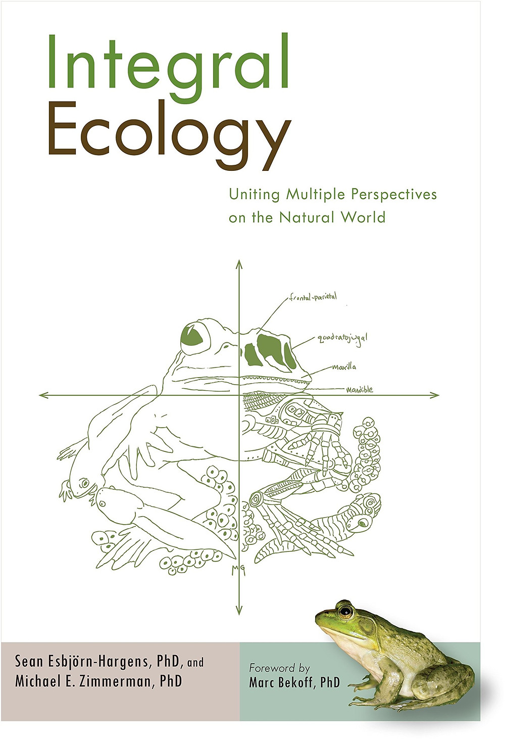 Обложка книги Шона Эсбьорна-Харгенса и Майкла Зиммермана «Интегральная экология» (Esbjörn-Hargens S., Zimmerman M. Integral Ecology: Uniting Multiple Perspectives on the Natural World. — Boston & London: Integral Books, Shambhala Publications, 2011).