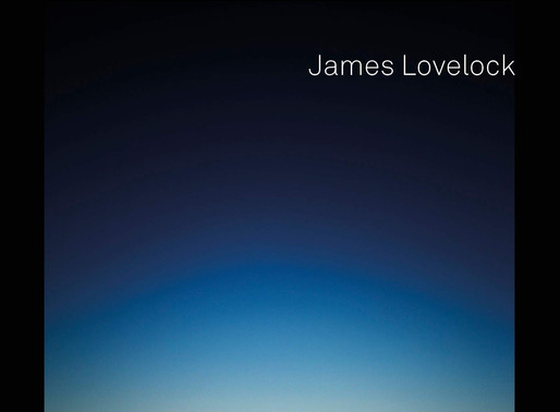 An Integral Criticism of James Lovelock's Novacene (2019)