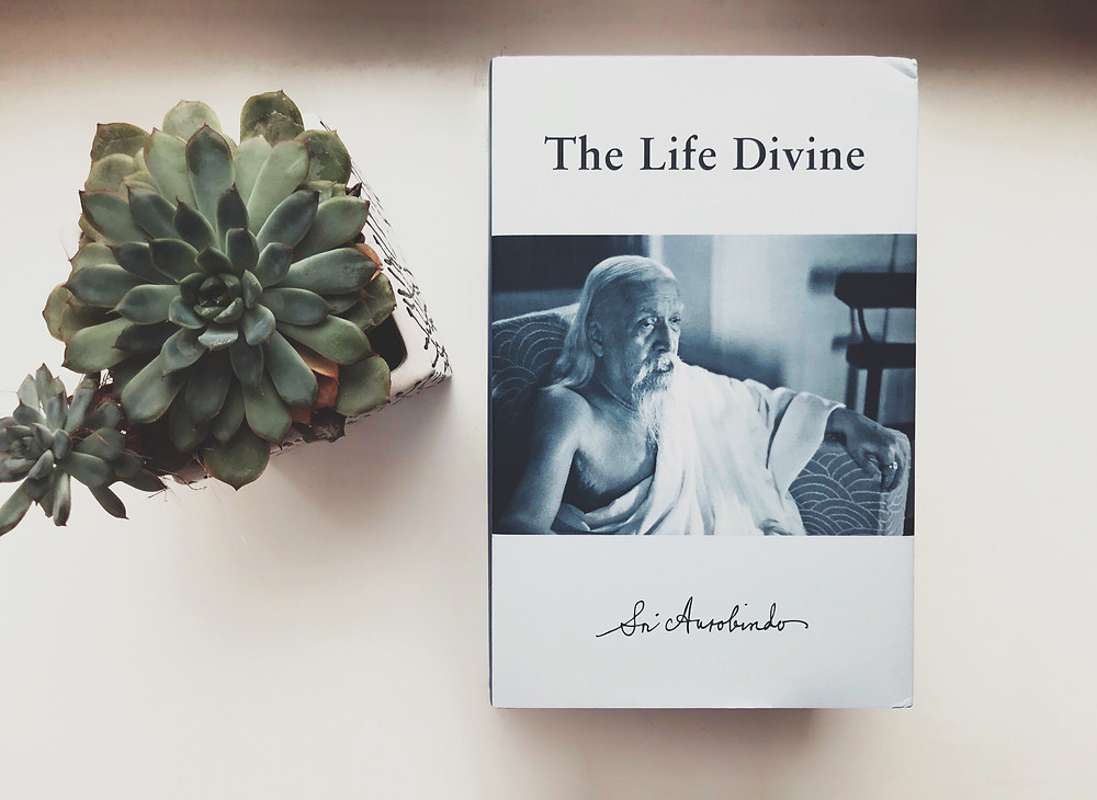 Sri Aurobindo, «The Life Divine» («Жизнь Божественная»). Photo by Tatyana Parfenova