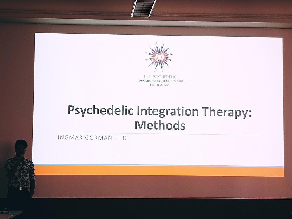 Ингмар Горман. Доклад по теме терапии психоделической интеграции (в рамках предконференционного воркшопа). Конференция INSIGHT 2019