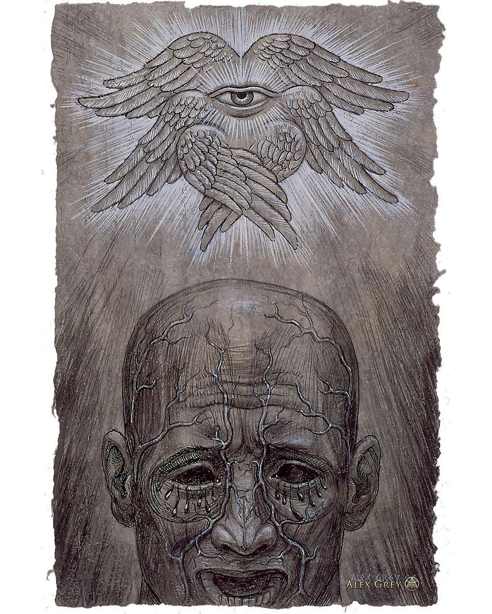 Алекс Грей, «Видеть или не видеть» (1996)
