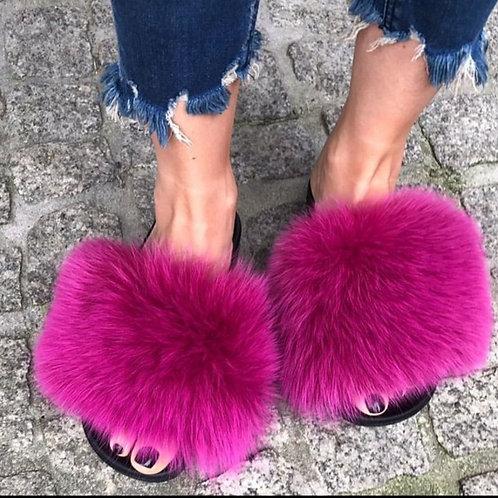 Hot Pink Fox