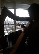 NYC through Harp Strings.jpg