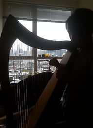 NYC through Harp Strings.jpg