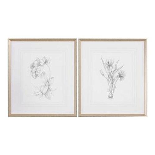 Gold Frame Botanical Art Series