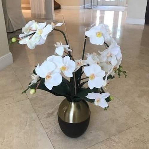 Orchid in Gold and Brown Pot