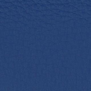 Burst of Blue