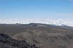 Zuri on Kilimanjaro