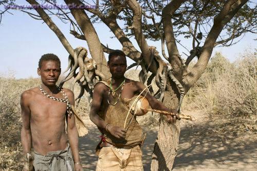 Hazabe tribe