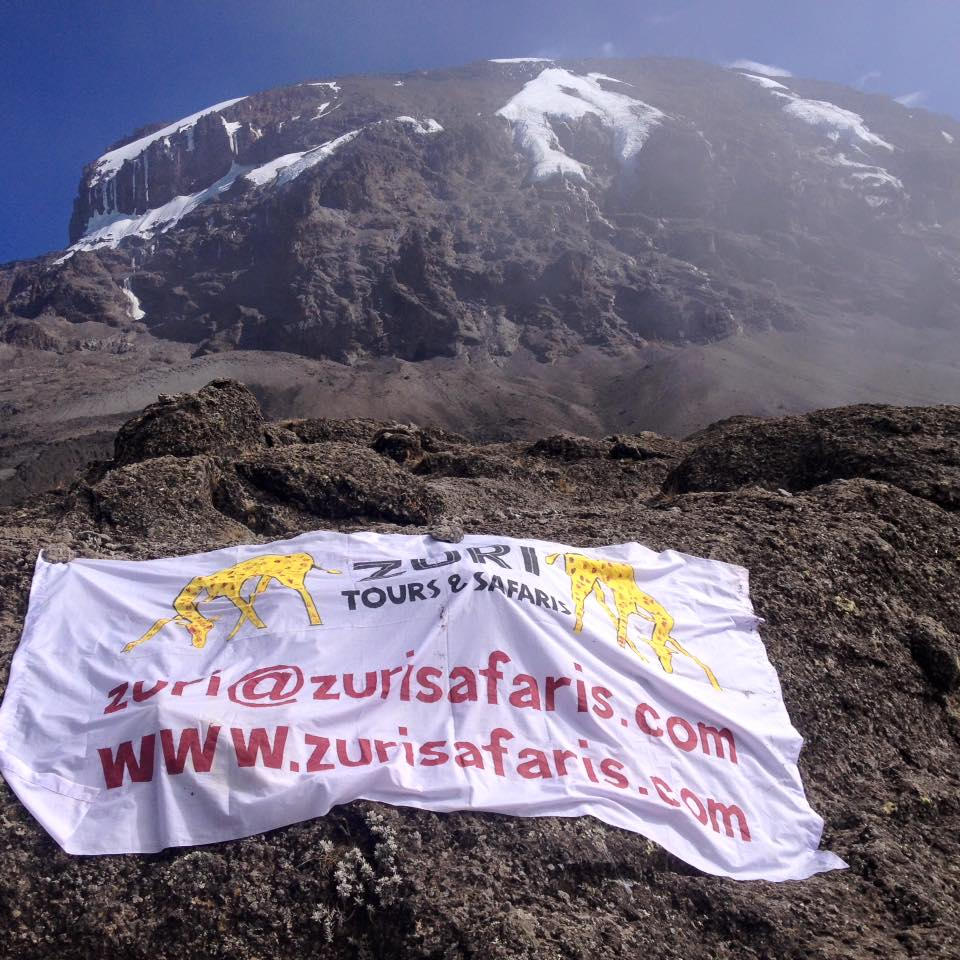 Zuri on Kilimanjaro.jpg