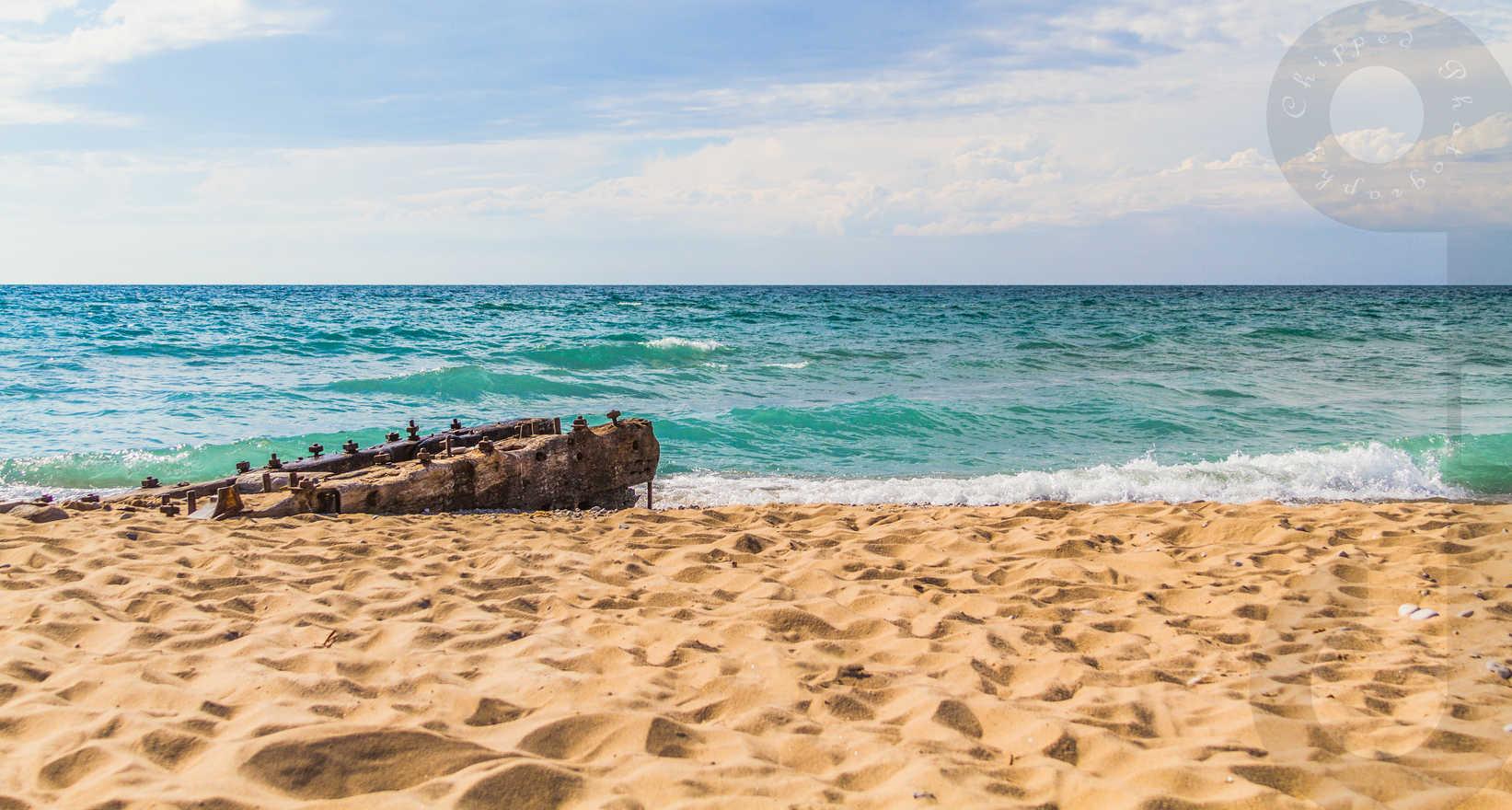 Sandy Beach Wood_WM1.jpg