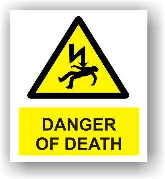 Danger of Death (W008)