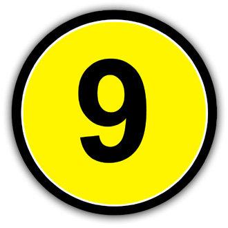 9 (L038)
