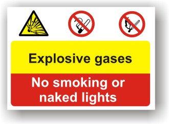 Explosive Gases (I001)