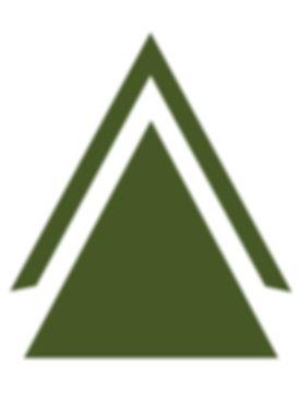 Rainforest-triangle.jpg