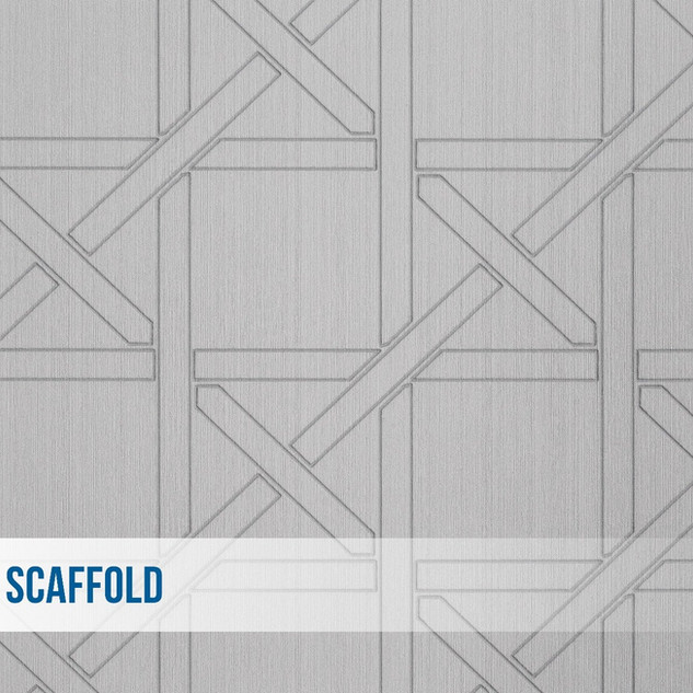 1 Scaffold.jpg