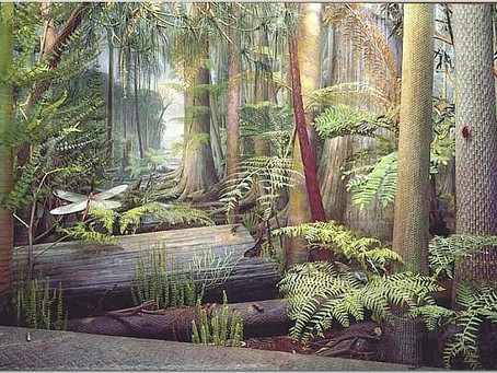 The Carboniferous Period In Central Alabama