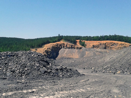 The Hunt For Fossilized Plants In An Active Surface Coal Mine