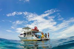 Ocean Divers Key Largo