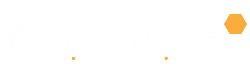 blanchette logo redesign blanc png.png
