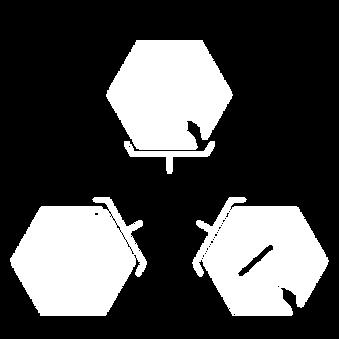 3 en 1 icons .png