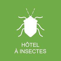 Hotel Insecte.jpg
