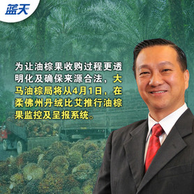 黄日昇:收购商4月每日呈报,柔试行油棕果监控系统