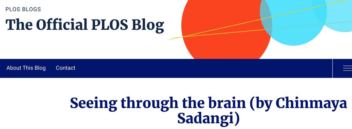 Seeing through the brain - Dr. Sadangi